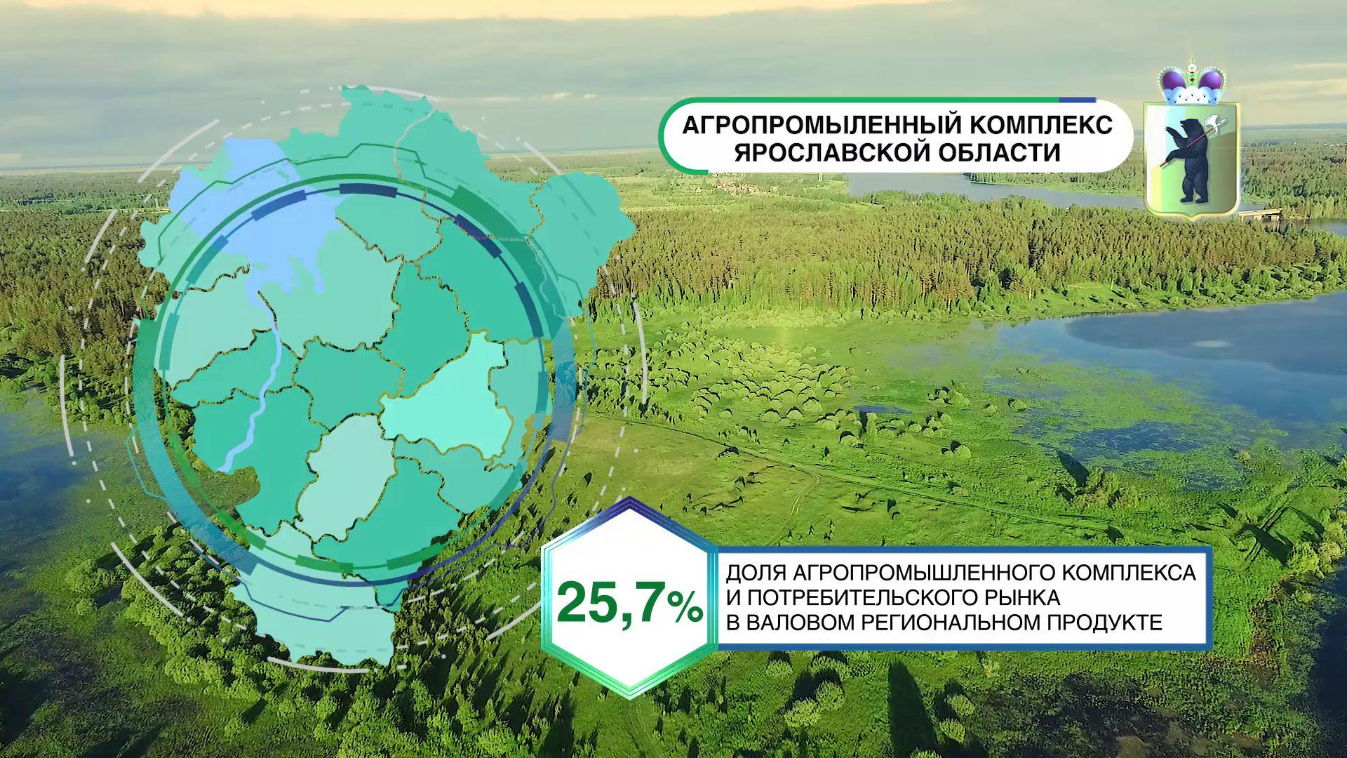 ВИДЕО: «Первый Ярославский» к выставке «Золотая осень» подготовил презентационный ролик Ярославской области