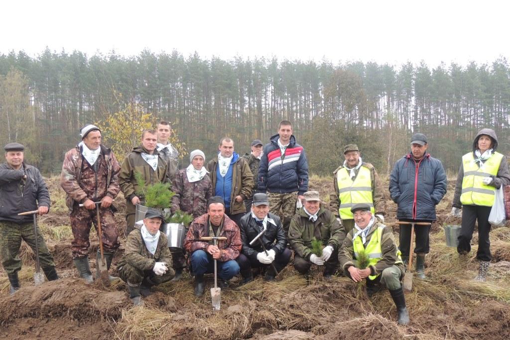 «Живи, лес!»: в Ярославской области высадили 37 тысяч молодых деревьев