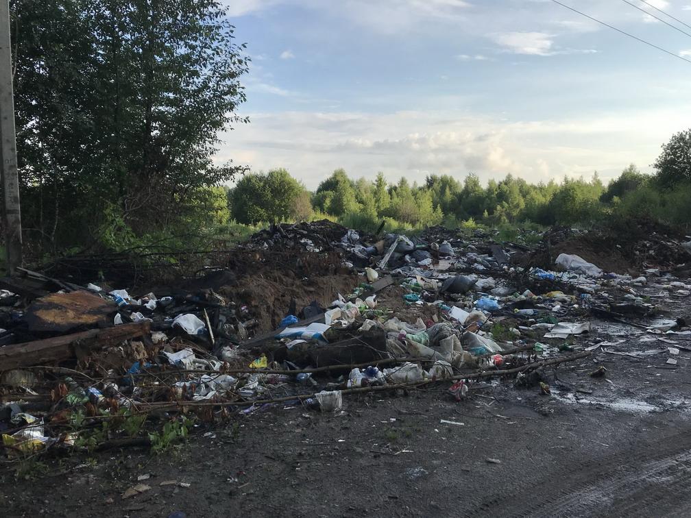Прокуратура потребовала ликвидировать свалку в Дзержинском районе
