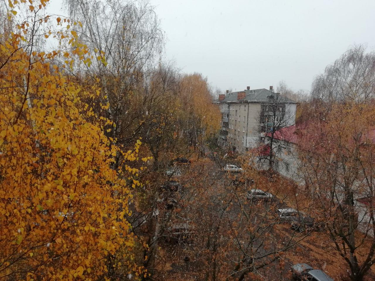 Снег и ночные заморозки: в Ярославскую область приходит зима