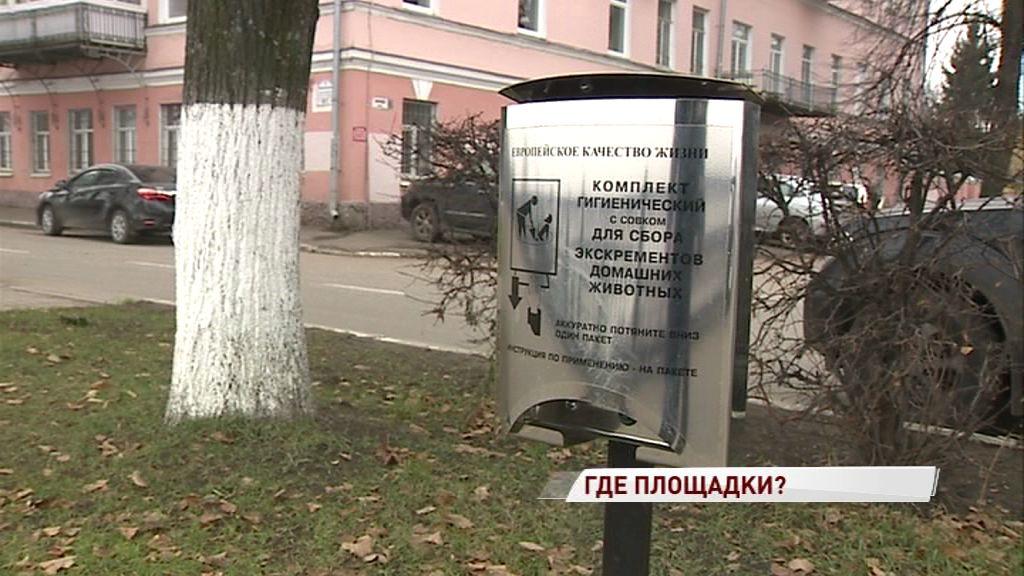 Одни испортили, вторые перекопали: кто в ответе за ярославские площадки для выгула собак