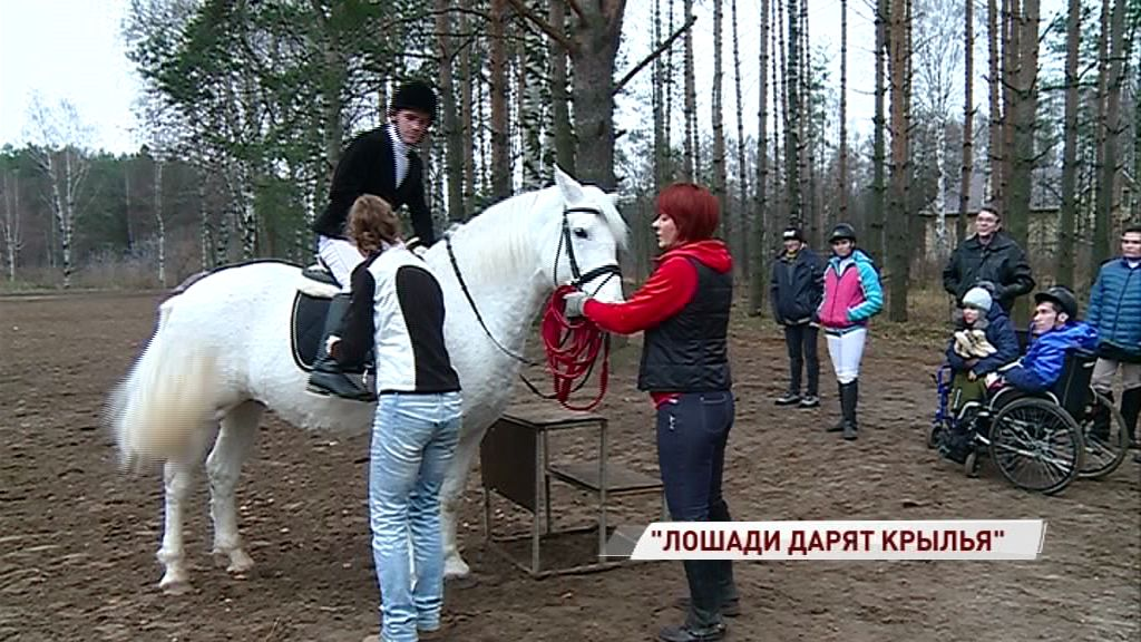 Проект лечения с помощью лошадей получил президентский грант