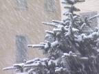 Ярославцев ждет последняя неделя относительно теплой погоды перед морозами