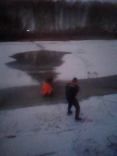 В поселке Творогово развернулась целая операция по спасению собаки из ледяной воды