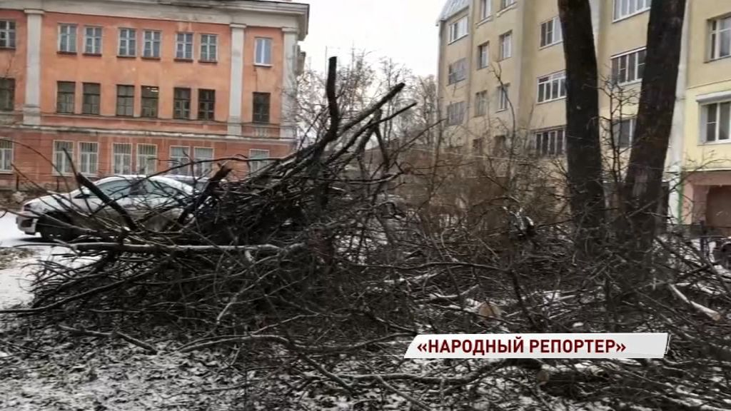 Жители дома на Чайковского просят убрать с детской площадки ветки от спиленных деревьев
