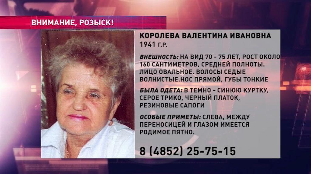 В области ищут пожилую женщину, которая могла заблудиться в лесу