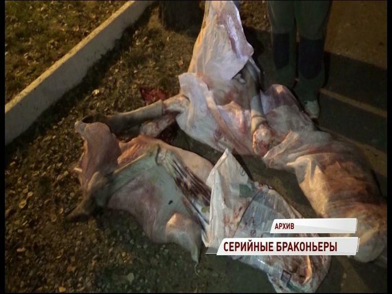 Полицейские задержали серийных браконьеров
