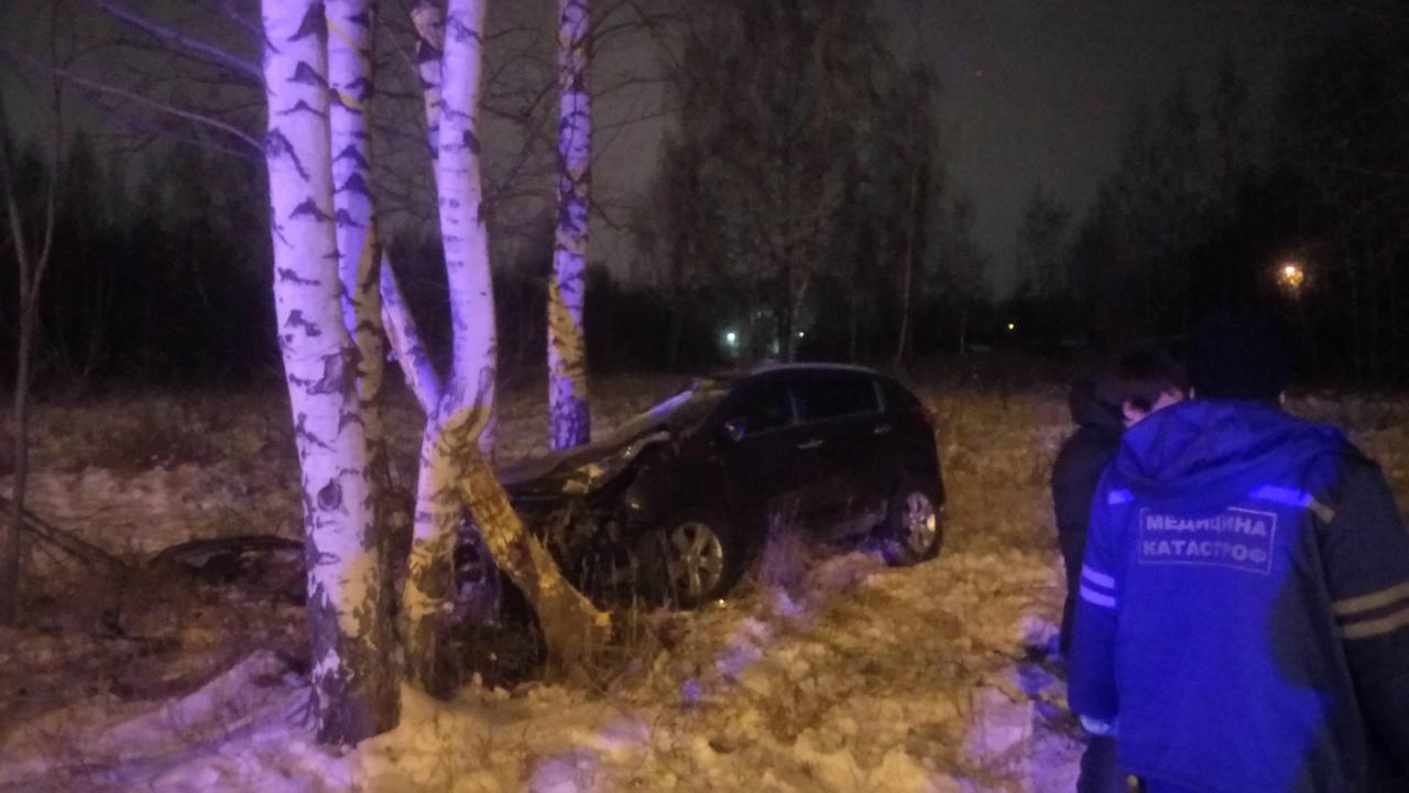 На проспекте Фрунзе иномарка вылетела с дороги и врезалась в березы