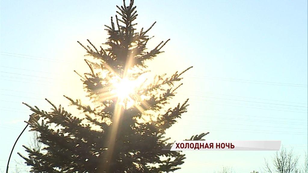Рождественские морозы придут в Ярославскую область