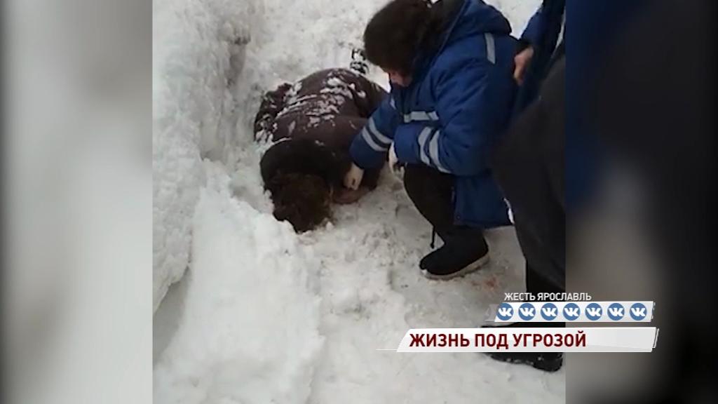 В Ярославле на голову женщине упала глыба льда: все подробности происшествия
