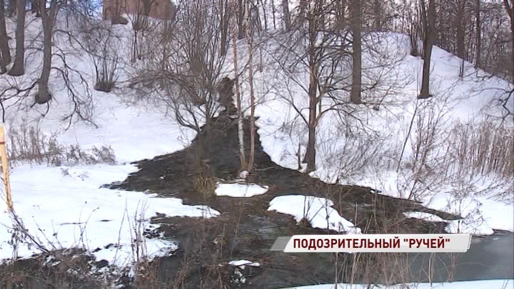 В Которосль «впадает» фекальный ручей: кто виноват в экологическом беспределе