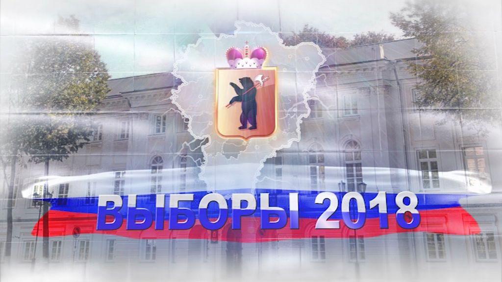 Кампанию ярославских единороссов по выборам в облдуму признали лучшей