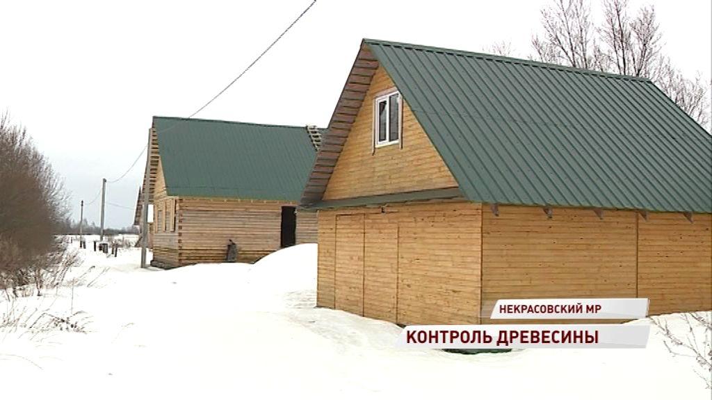 Купил древесину — строй: в Ярославской области лесные инспекторы проверили несколько земельных участков