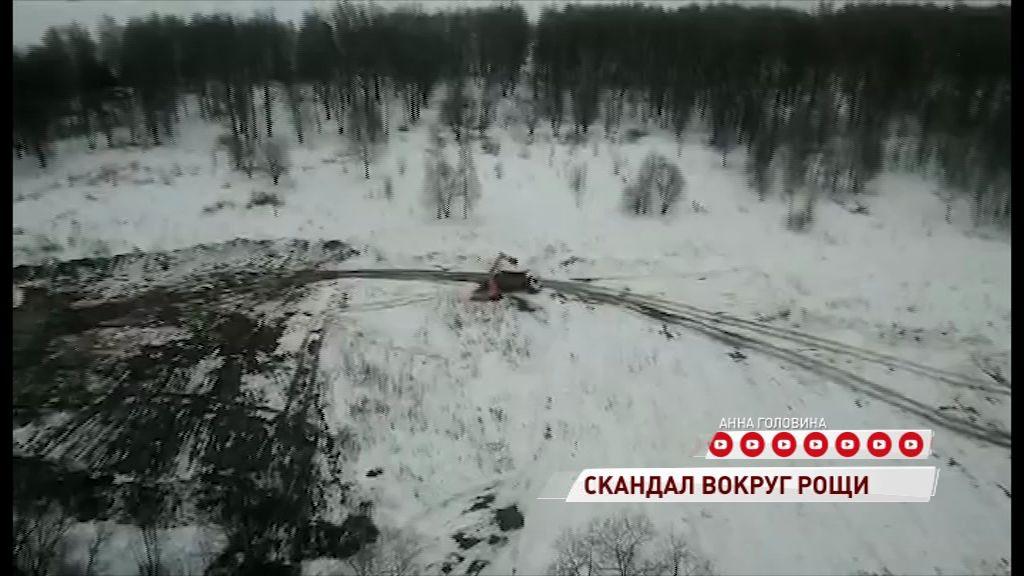 Жители Брагина бьют тревогу: в Павловской роще начали что-то строить