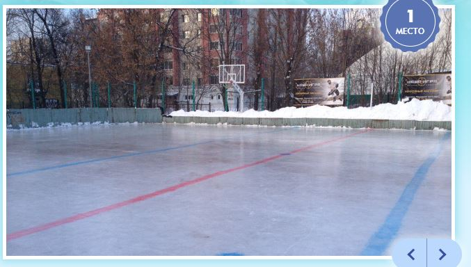Хоккейный корт школы Ивана Ткаченко могут обновить: идет голосование