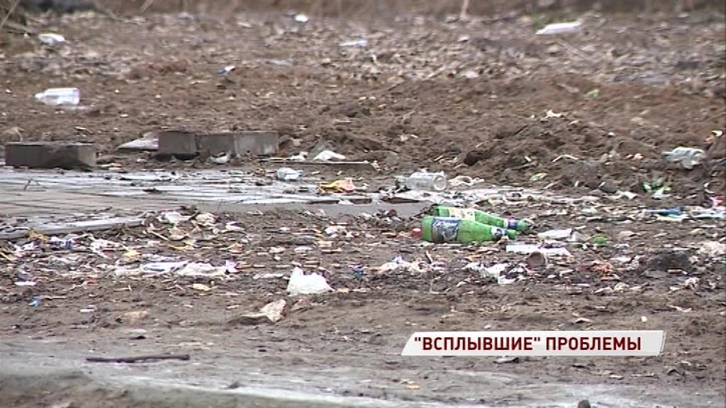 На дорогах грязь, а вместо подснежников – окурки: как выглядит весенний Ярославль