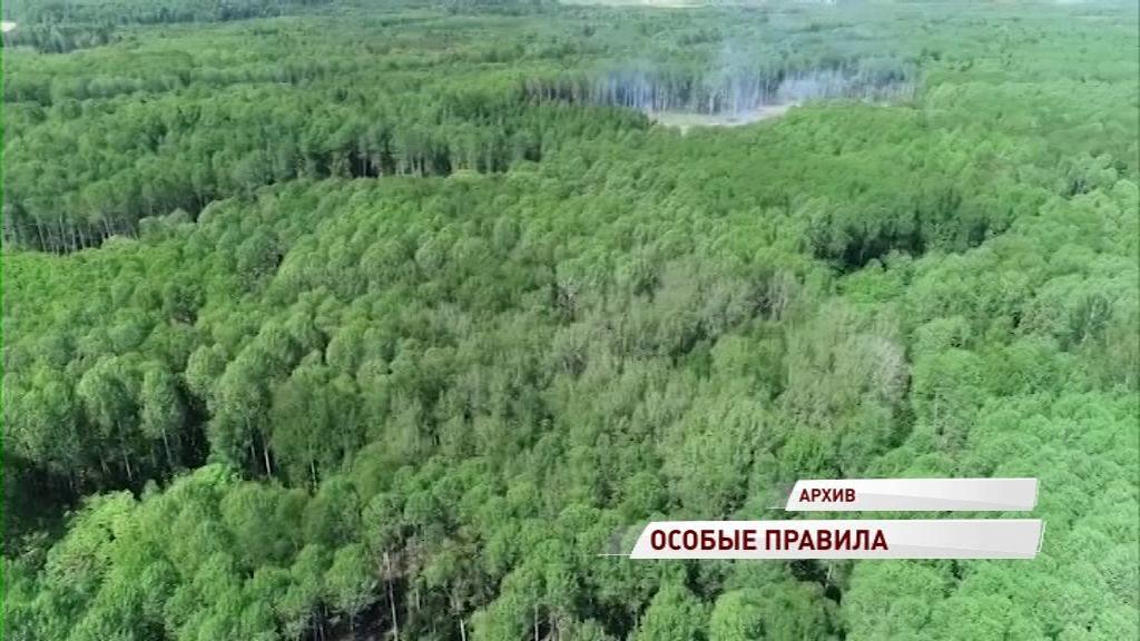В Ярославской области объявлен пожароопасный период