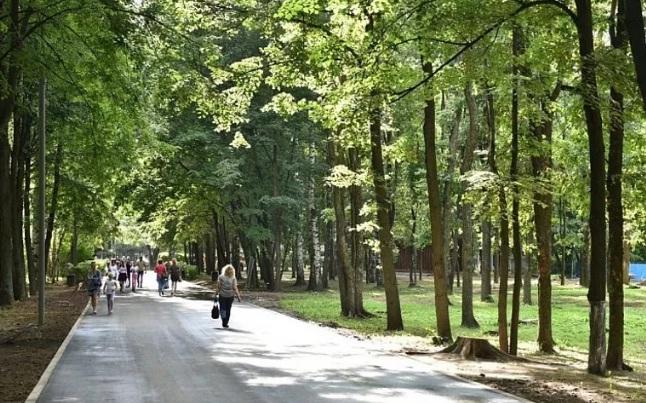 Состояние отремонтированного парка «Нефтяник» в Ярославле проверит спецкомиссия