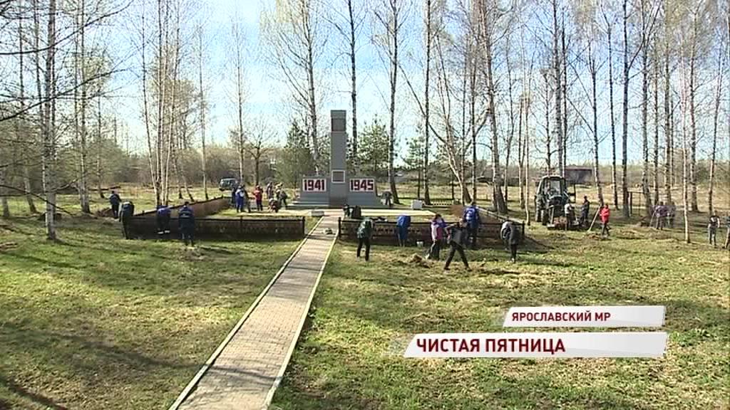 Жители Ярославской области продолжают борьбу за чистые улицы