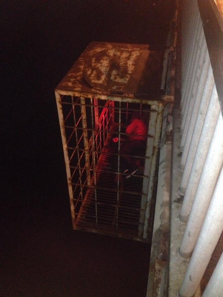 Спасатели ночью вызволяли человека из клетки под Октябрьским мостом