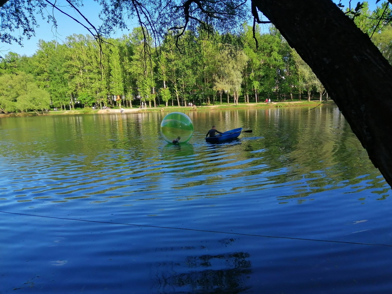 В Ярославле маленького ребенка унесло на зорбе на середину пруда