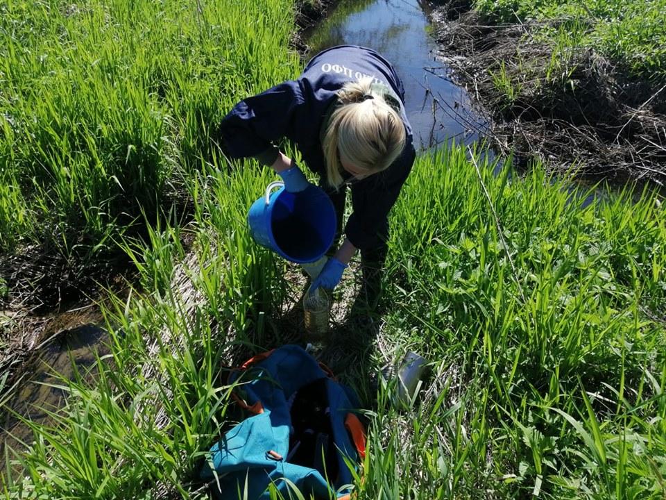 Проверка на «Скоково»: загрязняющих веществ, превышающих предельно-допустимые концентрации не выявлено