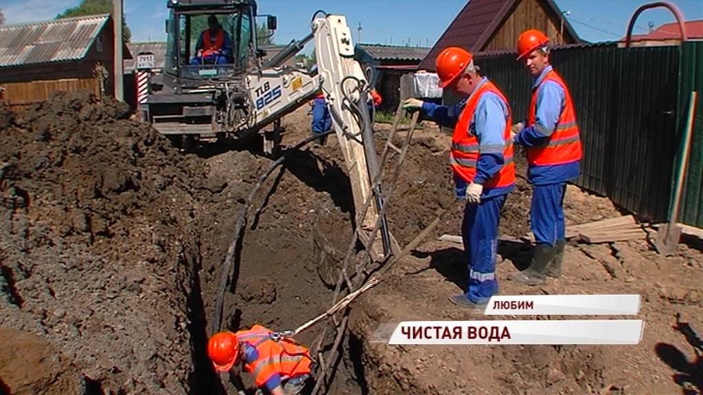 Из-за аварий едва не потеряли урожай: в Любиме начали менять старый водопровод