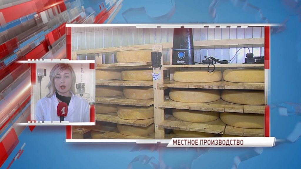 В Ярославской области увеличили производство сыра в два раза