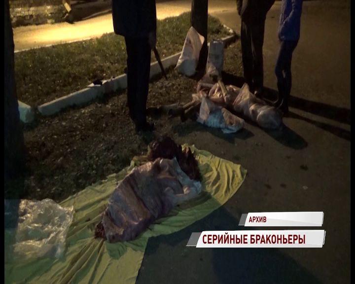 Браконьеры, убившие шесть лосей, ожидают суда