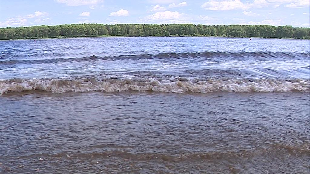 На одном паразиты, на другом – бактерии: на двух пляжах Ярославля нельзя купаться