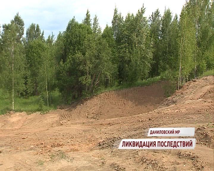 В деревне Шолохово ликвидировали несанкционированную свалку