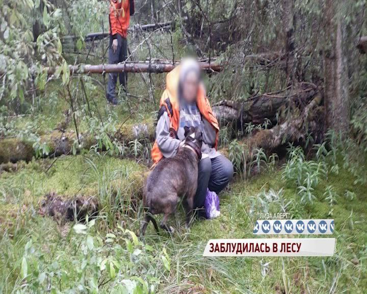 Пенсионерка заблудилась в Ярославском районе и всю ночь провела в лесу