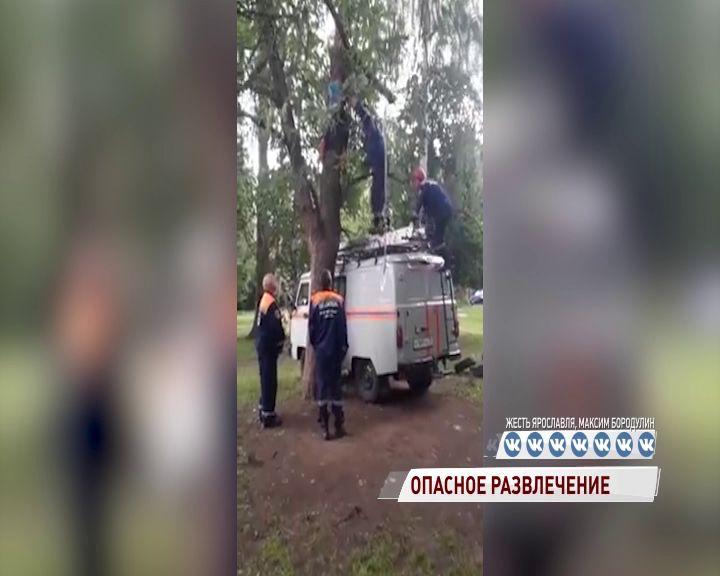 В Брагине спасатели сняли ребенка с дерева