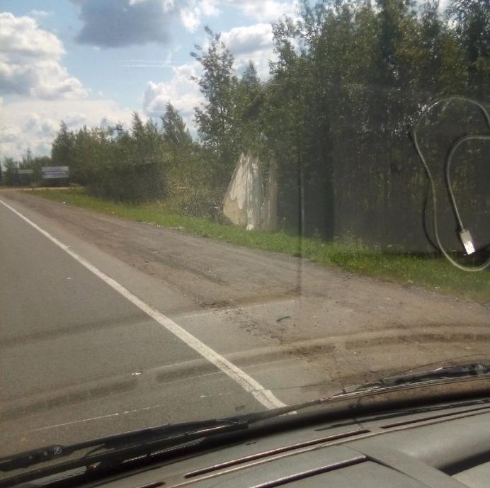 Парашютист в Ярославле немного не рассчитал место приземления