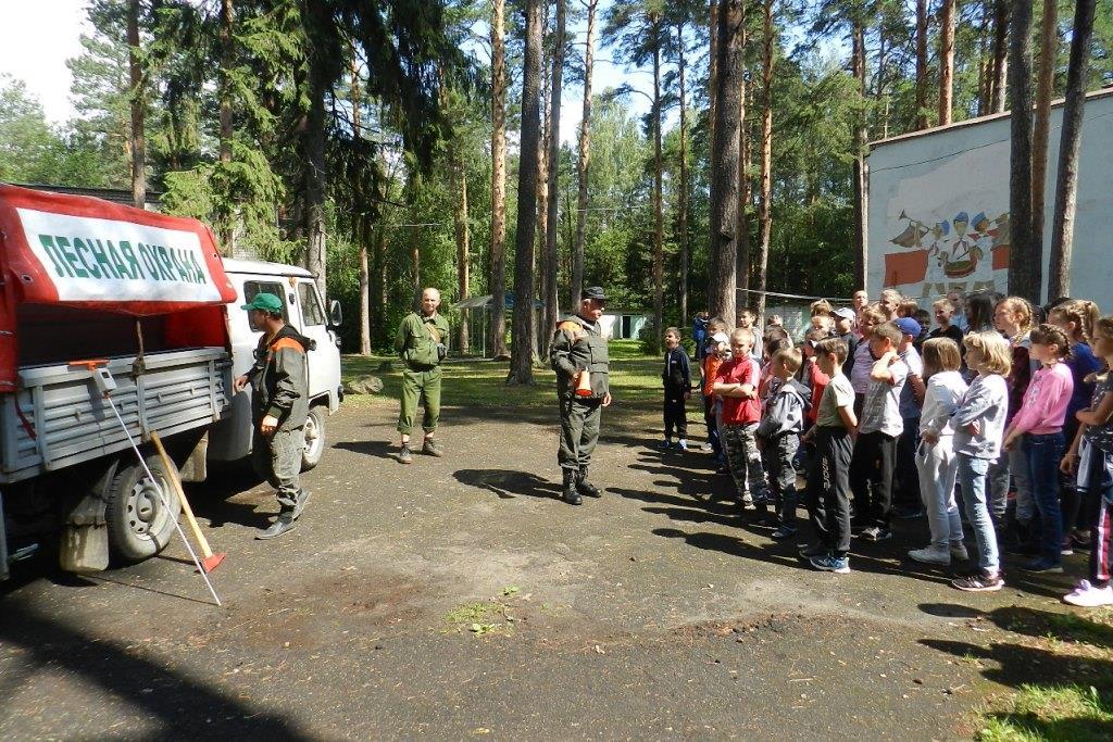 «Береги лес от пожара»: в детский лагерях проходит экологическая акция