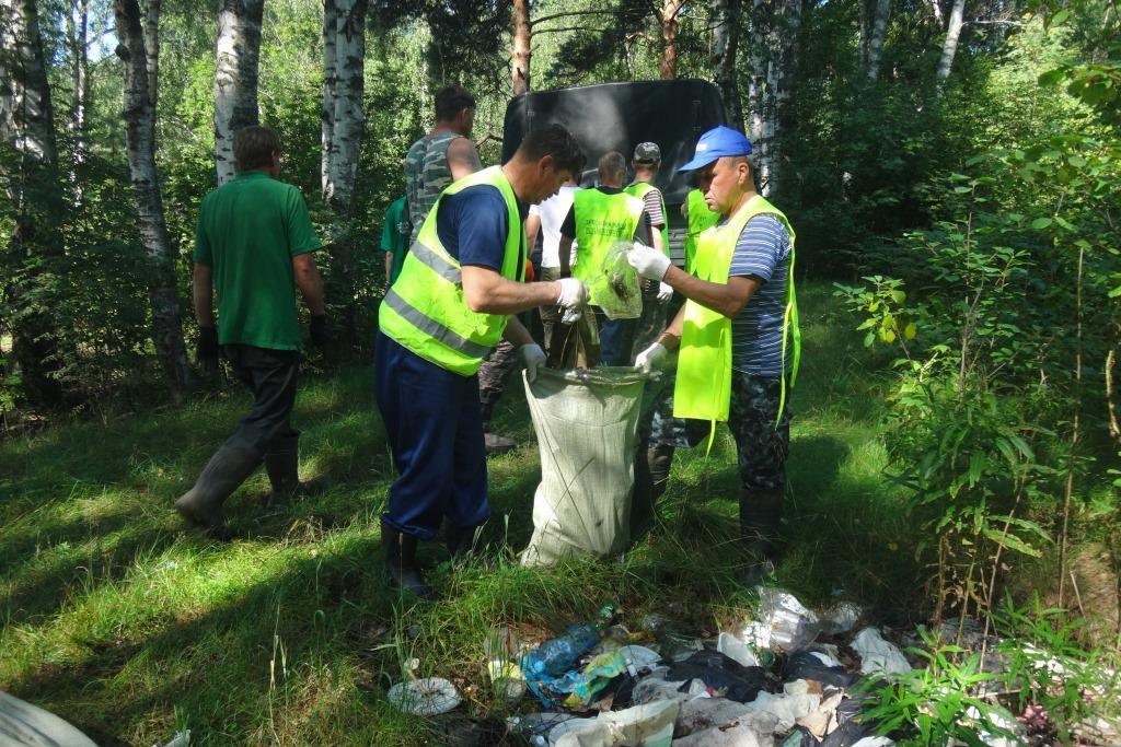В Ярославской области ликвидировали 36 крупных свалок в лесах