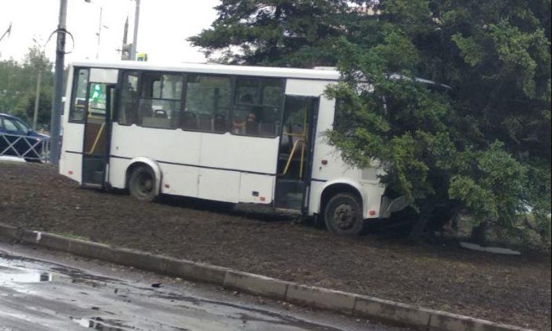 Отказали тормоза: маршрутка с пассажирами влетела в дерево в Ярославле
