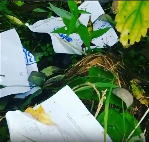 Сотрудницу почты, выбросившую в траву письма и квитанции, уволили с работы