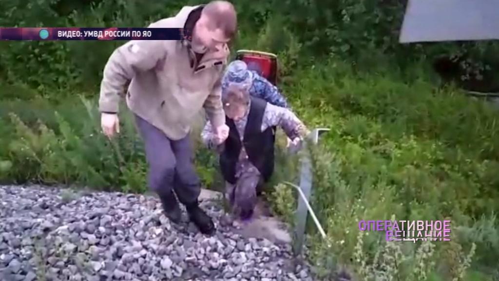 В лесу Тутаевского района с сиренами искали заблудившуюся пенсионерку