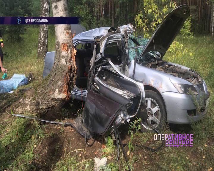 В Ярославле иномарка «намоталась» на дерево: есть погибший