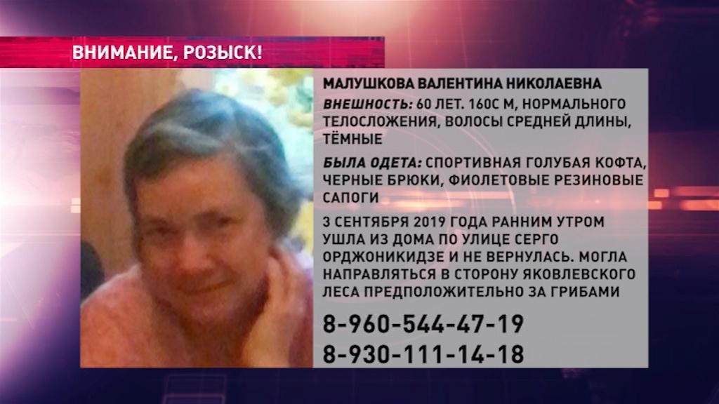 В Ярославле ищут пенсионерку, которая могла пропасть во время сбора грибов