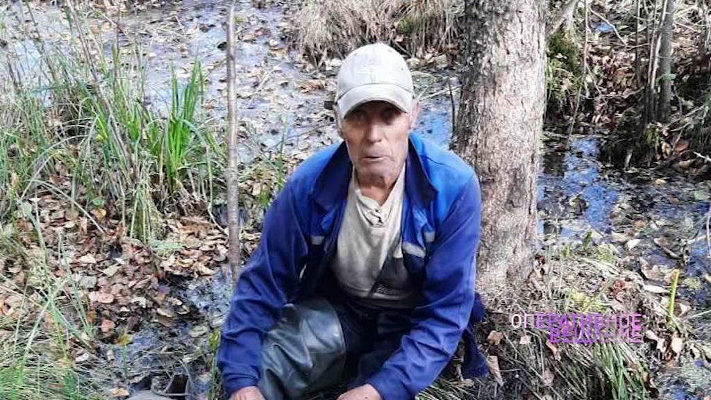 Ушел за клюквой и пропал на сутки: пропавшего в лесу пенсионера вынесли на носилках
