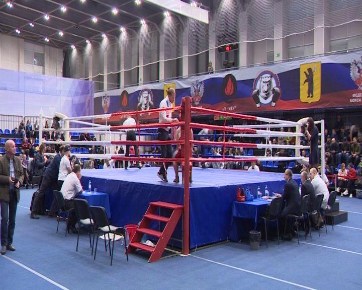 На Кубке губернатора по боксу выступят более 150 участников