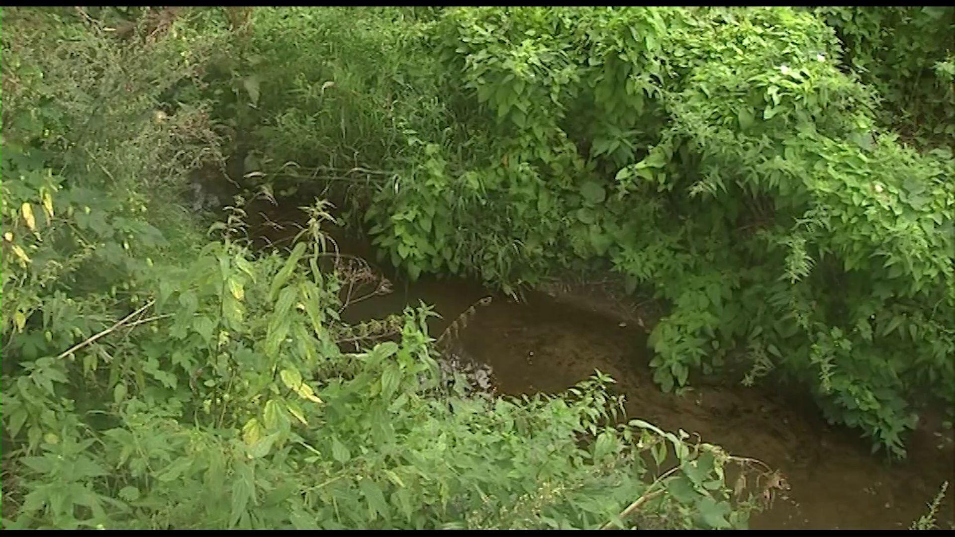 Фактов утечки фильтрата с территории полигона «Скоково» в реку Нору не выявлено