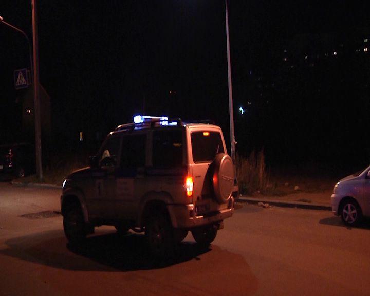 В Некоузском районе полицейские задержали дачного вора