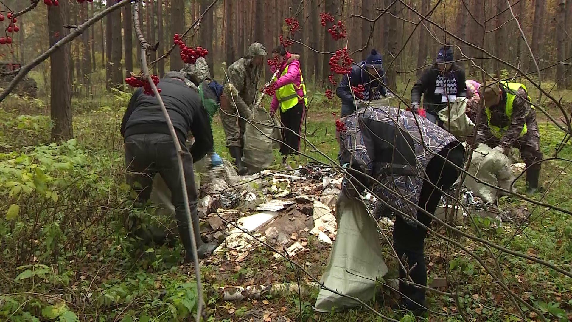 Яковлевский бор очистили от мусора вручную