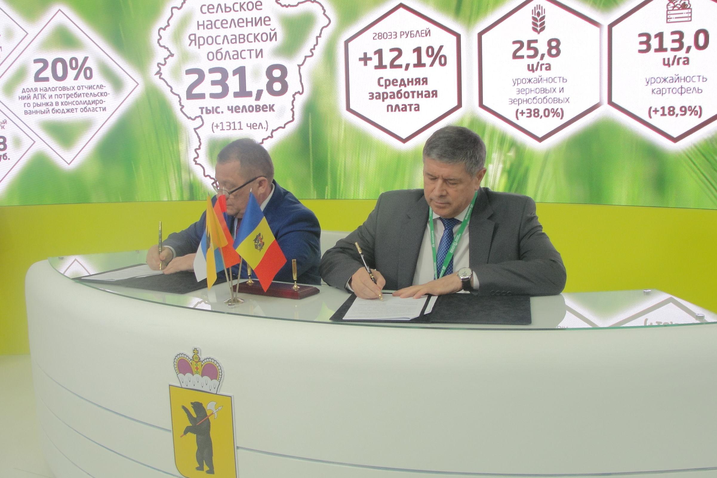 Ярославская область планирует сотрудничать с рядом государств