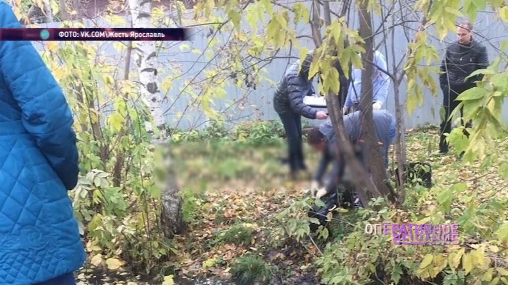 Неделю пролежал под листвой: в Красноперекопском районе нашли труп