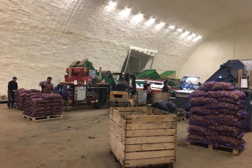 В Ярославской области сельхозпроизводители могут вернуть до 25 процентов понесенных затрат