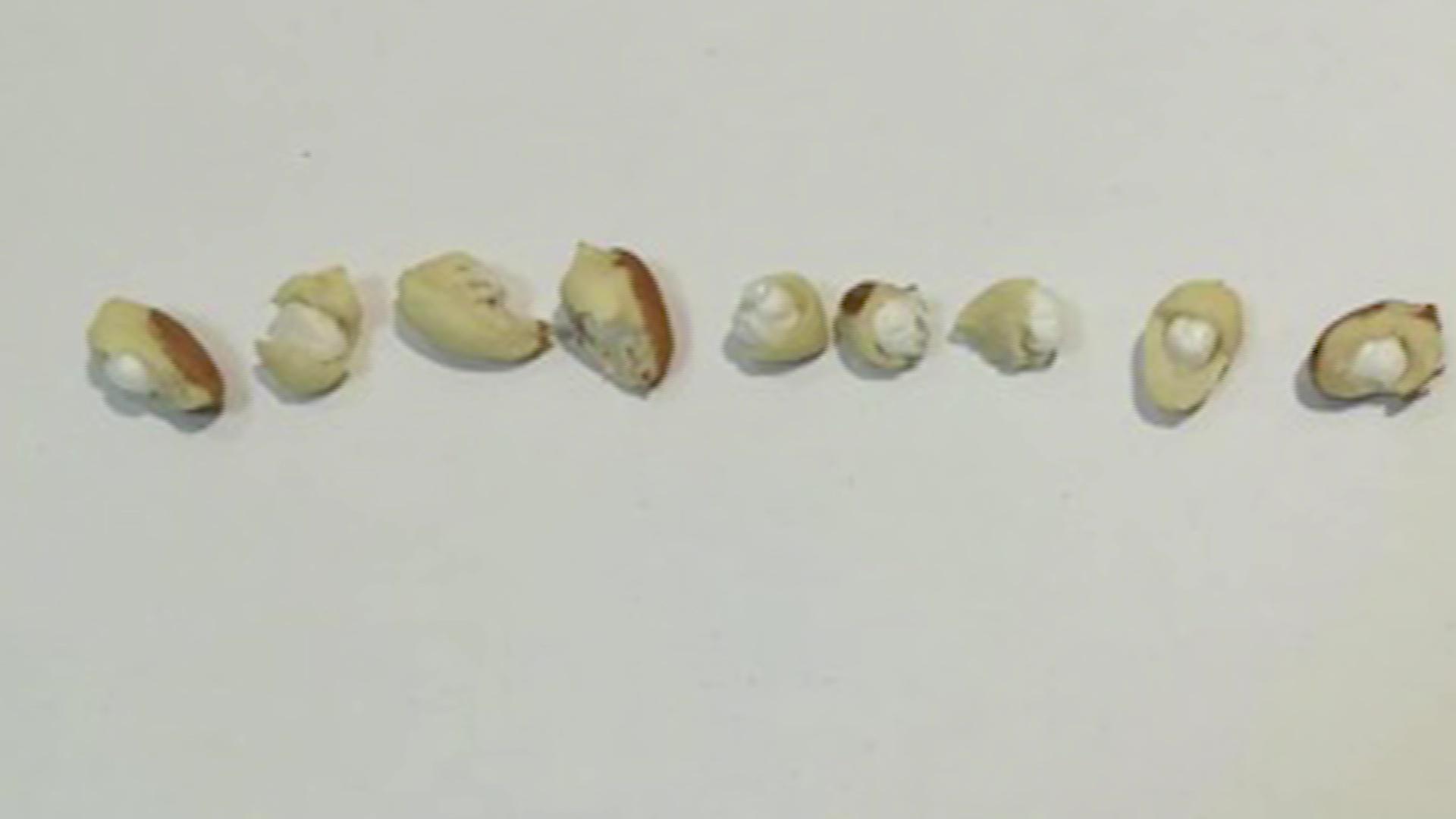 Рыбинец пытался передать в колонию арахис с наркотиками